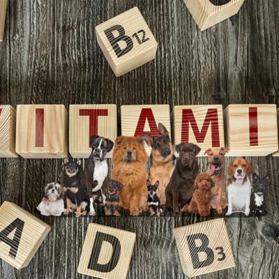 犬に必要なビタミン。それぞれのビタミンの働き